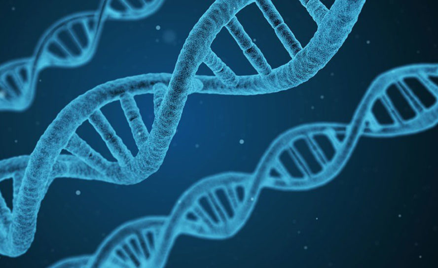 World-leading genome sequencing capability established