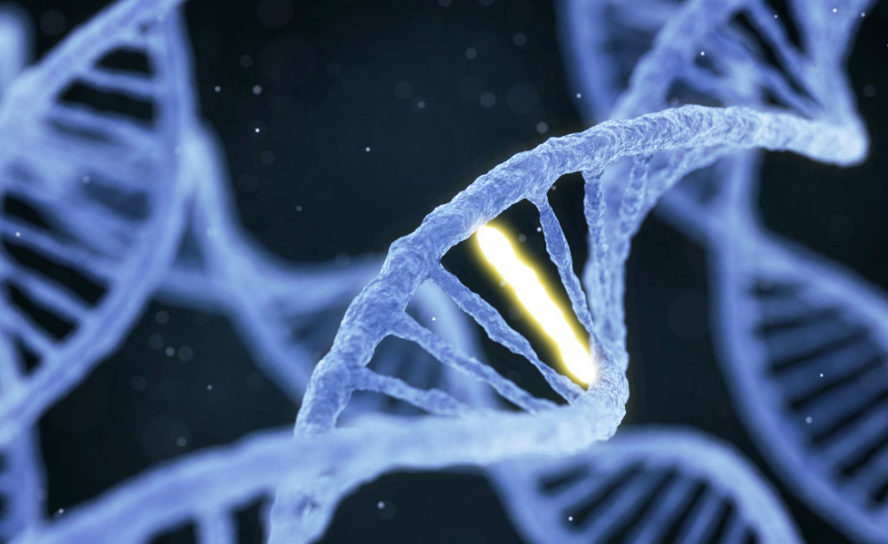 Genome therapy with beneficial natural mutation could lead to new treatment
