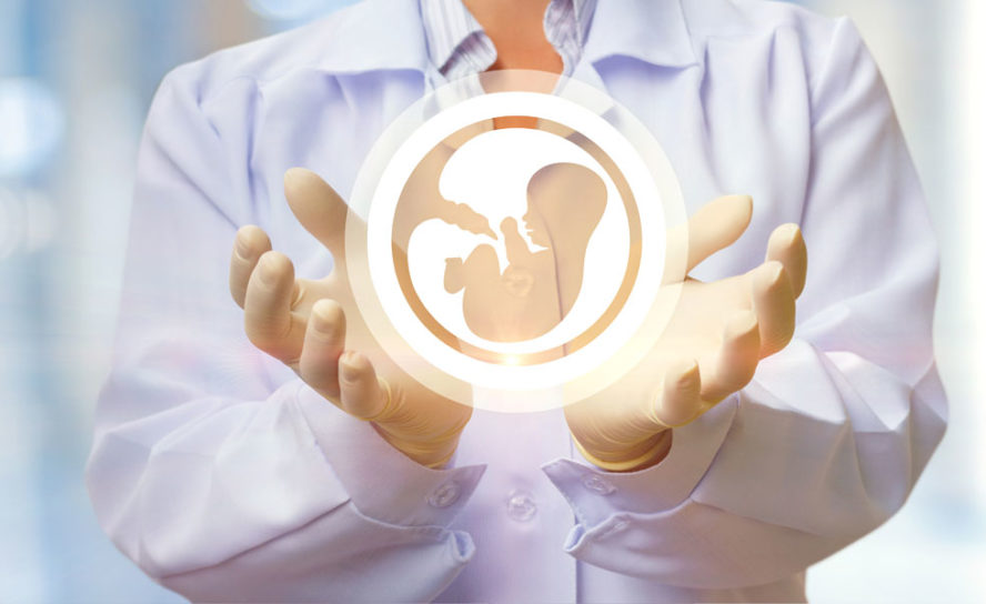 New technique to aid IVF embryo selection