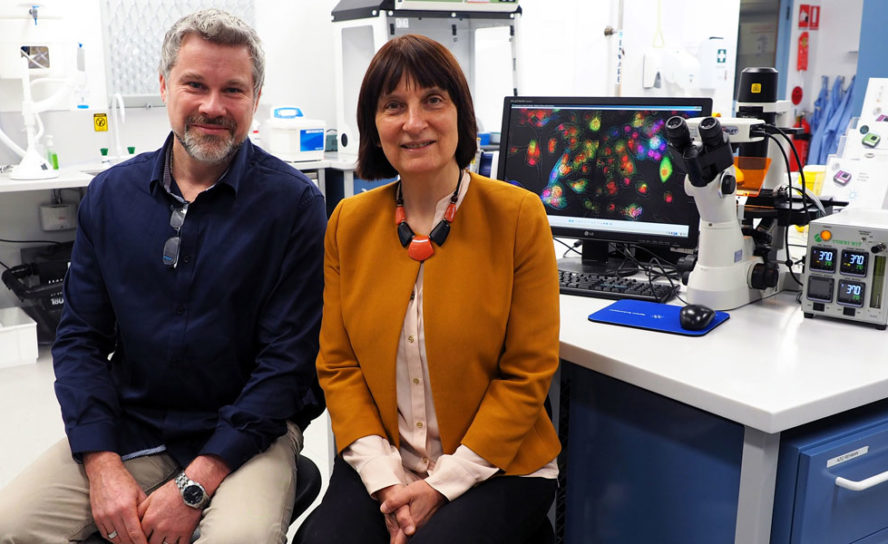 New technique to aid bladder cancer diagnosis
